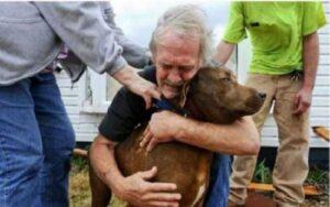 uomo spende i suoi risparmi per salvare il suo cane da una malattia cardiovascolare