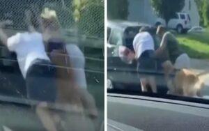 Cane viene ripreso mentre aiuta il suo padrone a spingere un auto non funzionante per strada