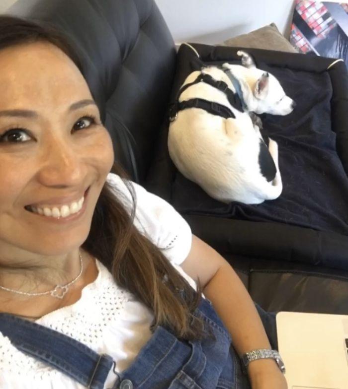 donna che ha paura dei cani adotta cane che ha paura degli umani