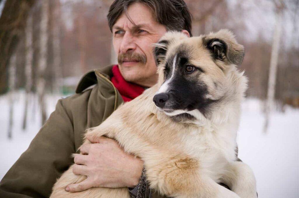 aspetti del cane che possiamo vedere per conoscere tratti del suo padrone