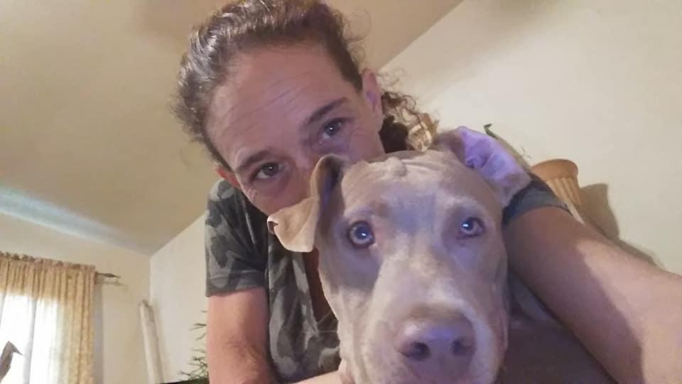 cane rapito viene ritrovato dalla sua padrona in un rifugio