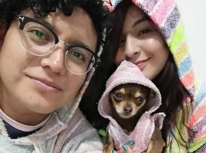 Chihuahua viene abbandonato ma trova una nuova famiglia che l'ha adottato