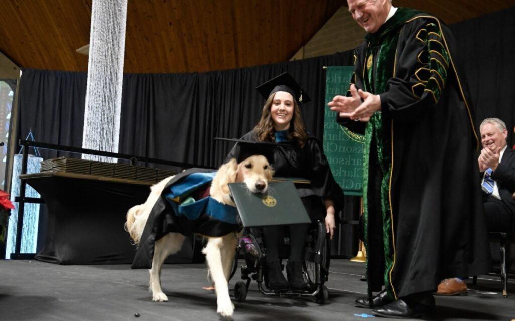 cane riceve una laurea dal college