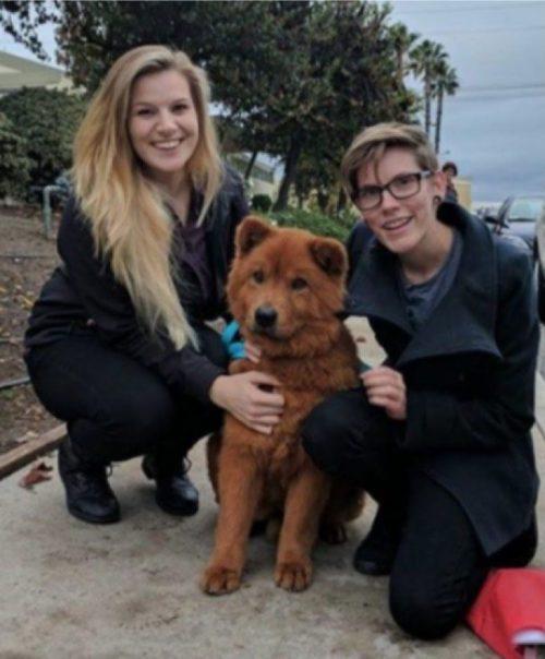 cucciolo viene salvato da una malattia della pelle e malnutrizione