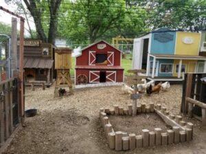 uomo costruisce una città per le galline