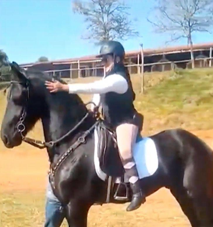cavallo si sdraia per far salire la padrona