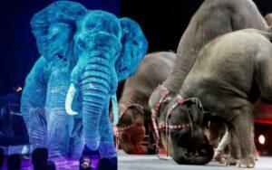 circo sostituisce gli animali con dei bellissimi ologrammi