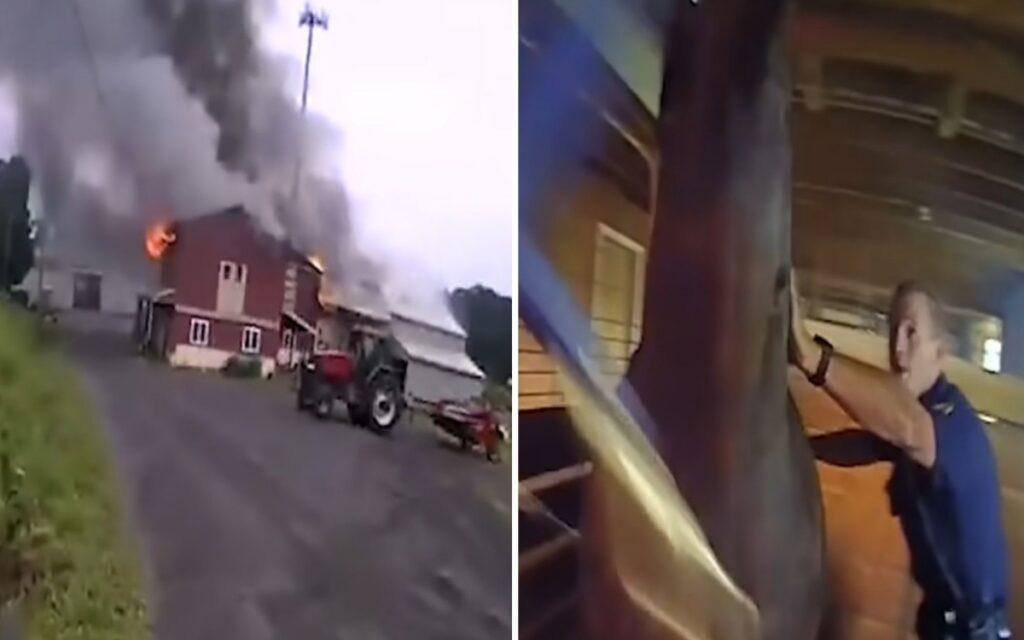 agenti salvano cavallo in un incendio
