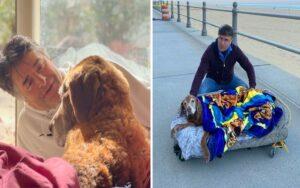 uomo costruisce un letto mobile per far fare l'ultima vacanza al suo cane