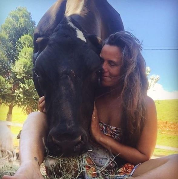 mucca canta una canzone insieme alla sua padrona