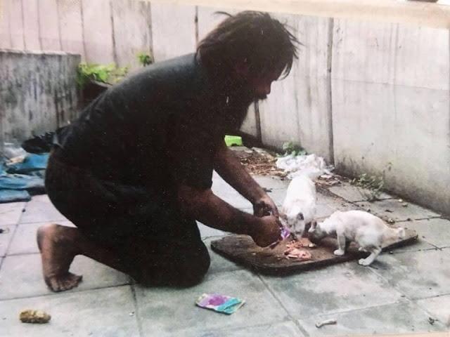 senzatetto spende i suoi soldi per sfamare dei gatti randagi