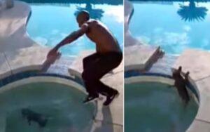 uomo salva il suo cane dall'annegamento in una vasca idromassaggio