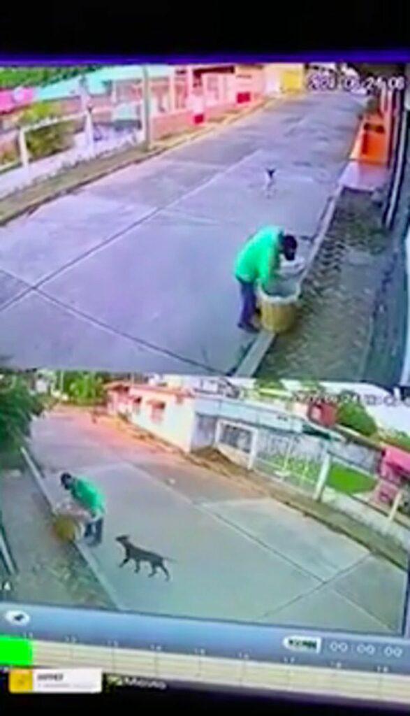 venditore offre la propria merce per sfamare dei cani affamati