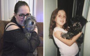 ragazza adotta, senza saperlo, il suo vecchio cane d'infanzia dato via per problemi superiori