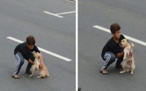 bambino si precipita per strada per salvare un cane ferito