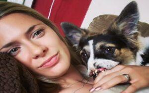 cane senza una zampa e naso viene adottato