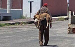 anziano porta il suo cane in spalla per non farlo scottare