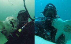 uomo diventa amico di uno squalo e giocano insieme