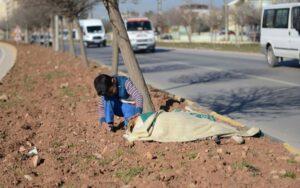 bambino di 8 anni aiuta un povero cane investito
