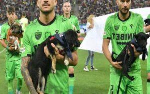 calciatori in Romania scenderanno in campo con i cani per tutto il campionato