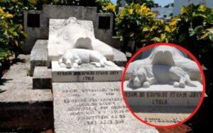 cane segue la sua padrona fino al cimitero e muore li, così gli viene dedicata una lapide speciale